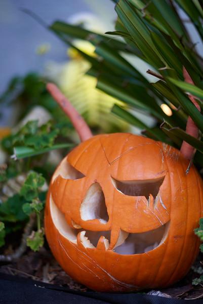 Halloween & El Dia de los Muertos 11.15