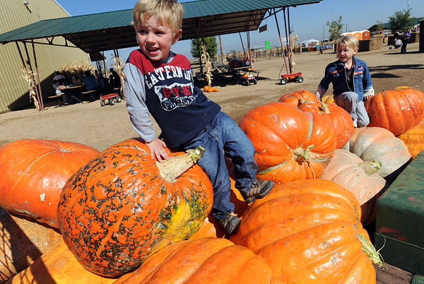 """Jackson Moore, 5, left, and Liviana Klisis, 4, play on the giant pumpkins at Anderson Farms. There are several Halloween activies at the Erie farm.<br /> For more photos and a video of Anderson Farms, go to  <a href=""""http://www.dailycamera.com"""">http://www.dailycamera.com</a>.<br /> Cliff Grassmick / October 7, 2010"""
