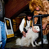 Nathan Troy, of Boulder (left) and Todd King, try and calm Zuzu the dog on the Pearl Street Mall on Halloween night, Oct. 31, 2009.  <br /> KASIA BROUSSALIAN / THE CAMERA