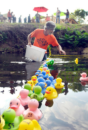 "Halo's ""duck master"" Jimmie Norris checks the numbers as the ducks hit the finish line at Halo's Bar weekly duck races."
