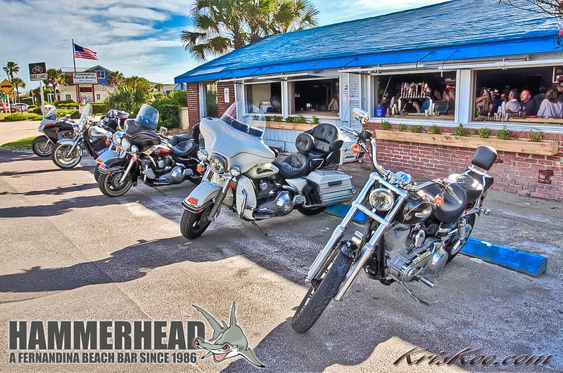 Hammerhead 4 29 12 - 77