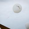Divalysscious Moms Balloon