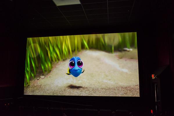 Haney Orthodontics Patient Appreciation Movie Day ~ Finding Dori