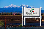 Hannah Nicole Vineyards Winery, Brentwood Wedding Venue & Reception. Wedding Photographers.