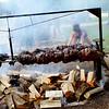 0716 ox roast 2