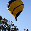 Scenes from the Harvest Balloon Festival in Flowery Branch, GA.