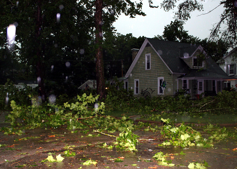 Some people's yards were so full of branches it would be impossible to walk in them.