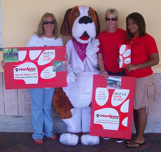 Buddy collecting donations at a local Publix.