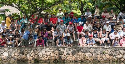 170529_Polynesian_Cultural_Center_025-2