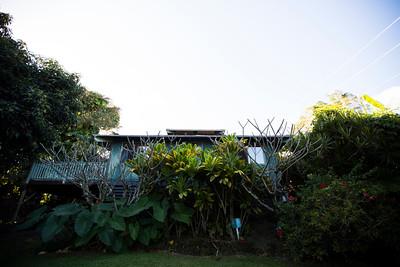 hawaii_amyannphoto_034