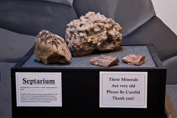 Septarium