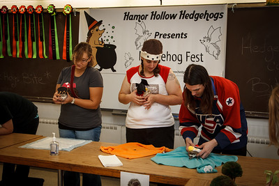 Hedgehog Fest '12 (10/06/2012) Hedgehog Fest '12 at Norfolk County Agricultural High School - Costume Contest (10/06/2012)