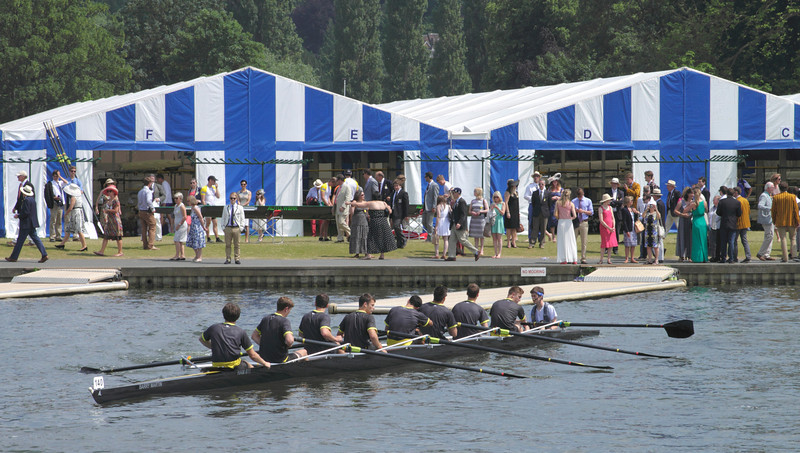 Henely Regatta 2013