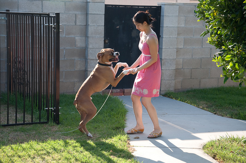 Connie dancing with the dog