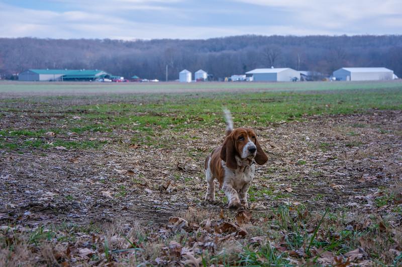 Herbst Farm Dec. 2018