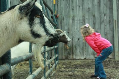 Hidden Valley Farm October 2009
