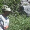 High Sierra Hike 2009 : 2 galleries with 344 photos