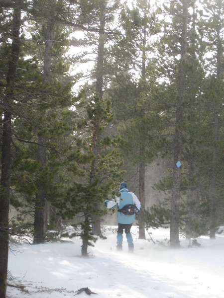 Skiing the lower Sour Dough in the wind - Dec 12, 2009