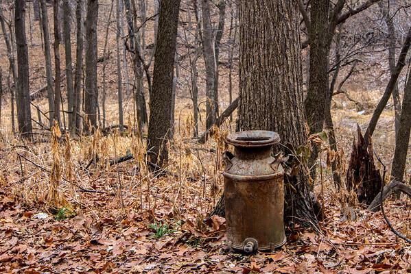 December 21, 2013, Fontenelle Forest