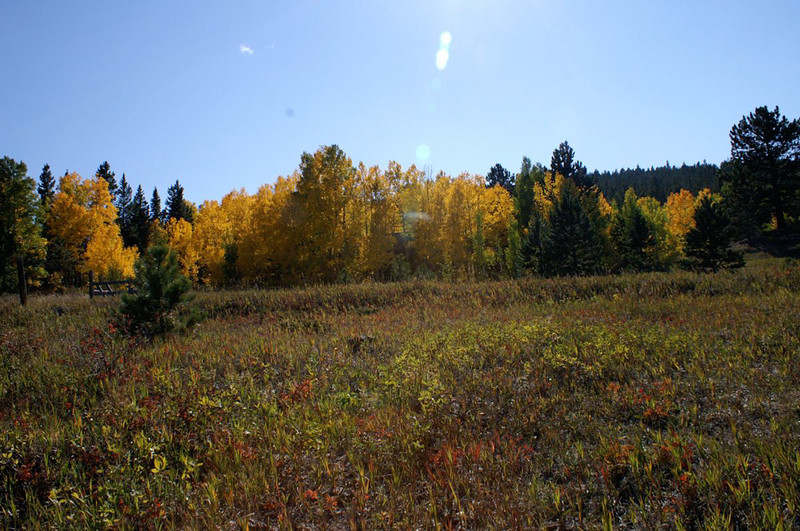 Craft day on Hurricane Hille and fall colors, 23 Sep 2006