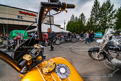 Hogs And Hot Rods