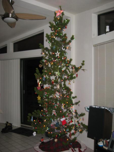 XMAS 2008 prep party - Let's trim the tree!