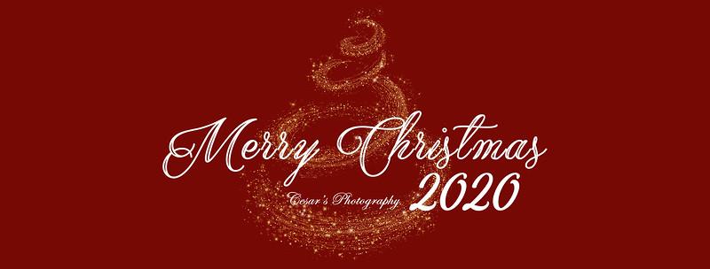 Christmas Logo II