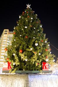 Detroit_Tree_Lighting_2014-17