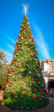 St Johns Town Center Christmas Tree