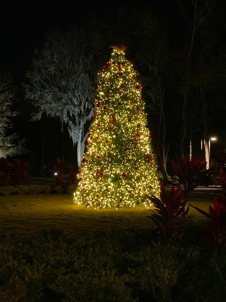 RiverClub Christmas Tree 2020