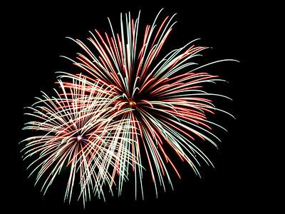Fireworks_9919 (100223457)
