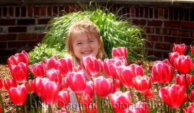 009c Michigan May 2009 - Ally crop softfocus drklitcenter
