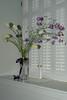 HT Garden Party 20120511-039