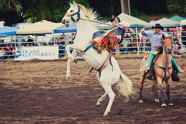 Honoka'a Rodeo 2011