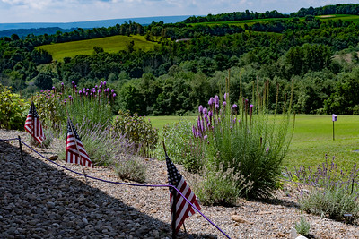 20190710 029 Hope Hill Lavender Farm, LLC