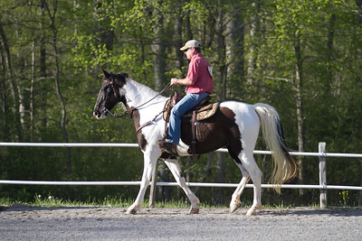 041115-HorseShow-2900