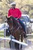 041115-HorseShow-3132