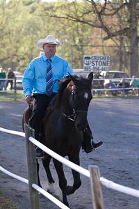 041115-HorseShow-2937