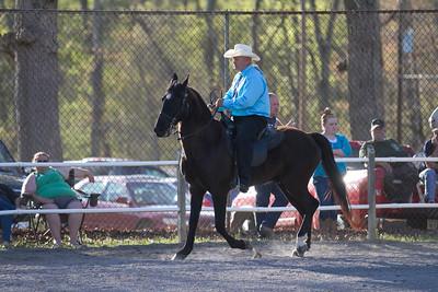 041115-HorseShow-2929