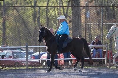 041115-HorseShow-2928