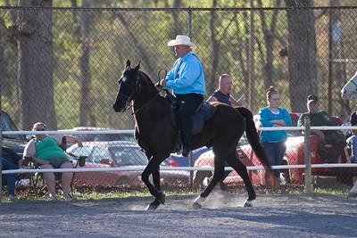 041115-HorseShow-2930