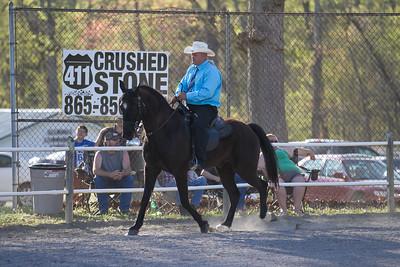 041115-HorseShow-2931
