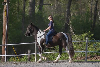 041115-HorseShow-2906