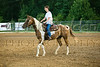 Double HH Ranch-2182