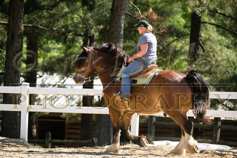 RBPhotography-4228