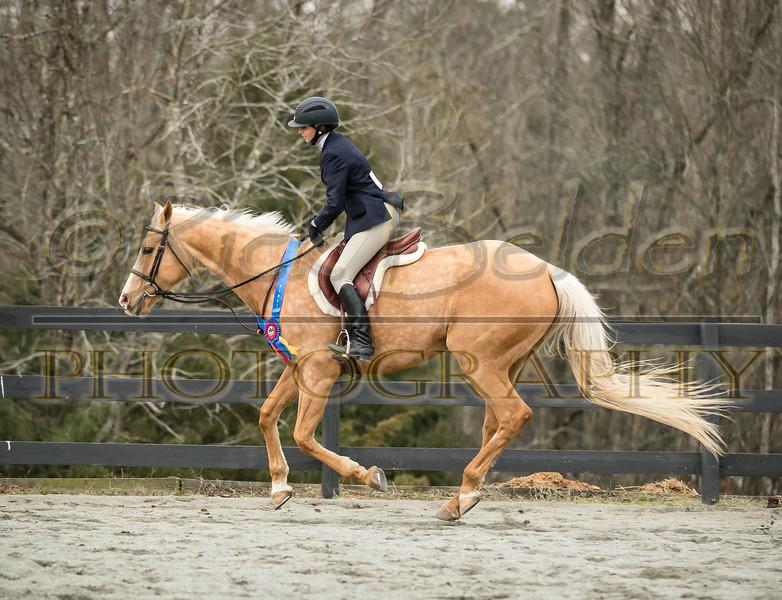 Running Wind-1195