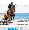 • Winter Equestrian Festival at Wellington<br /> •Horse jumping exhibition