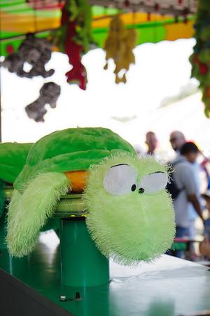 fuzzy turtle