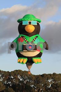 Fancy hot air balloon in Hamilton, waikato, New Zealand