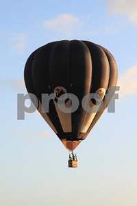 Black and white hot air balloon with a swan motive